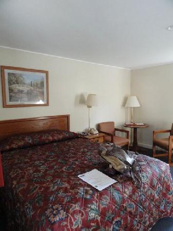 Blue Spruce Motel: Chambre-lit