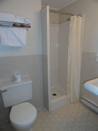 Blue Spruce Motel: s de bain (chambre avec douche seulement)