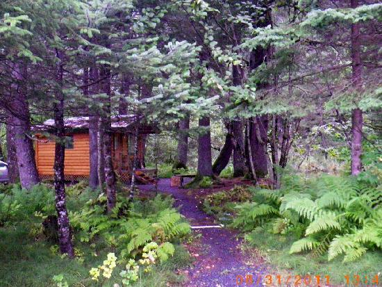 Alaska Creekside Cabins: Our Cabin-Spruce