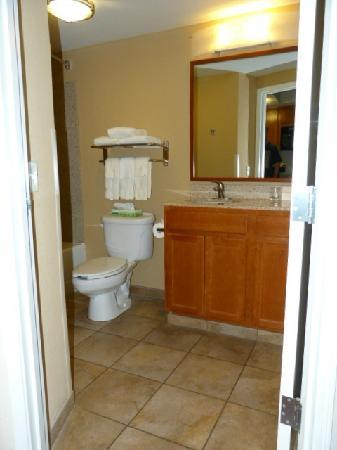 Candlewood Suites-Omaha Airport: Bathroom View from Kitchen