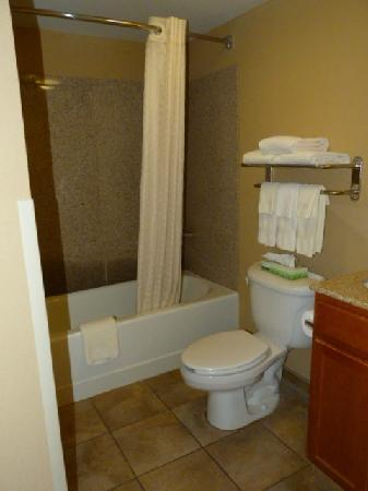 Candlewood Suites-Omaha Airport: Bathroom View from Inside Bathroom