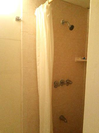 "Kaanapali Ocean Inn: very small shower, bad fixtures, and if you are taller than 5'5"" the shower head will be WAY too"