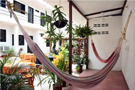 Hotel Ocean Taganga Internacional: Nuestro patio