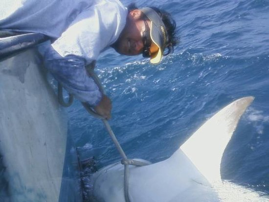Paradise Fishing Charters