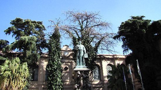 Manzana Jesuitica: Entrance at the University