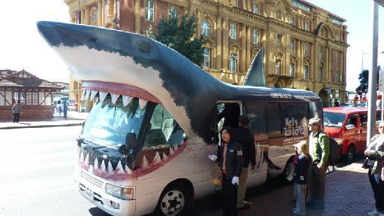 Sea Life Kelly Tarlton's Aquarium: The shark bus