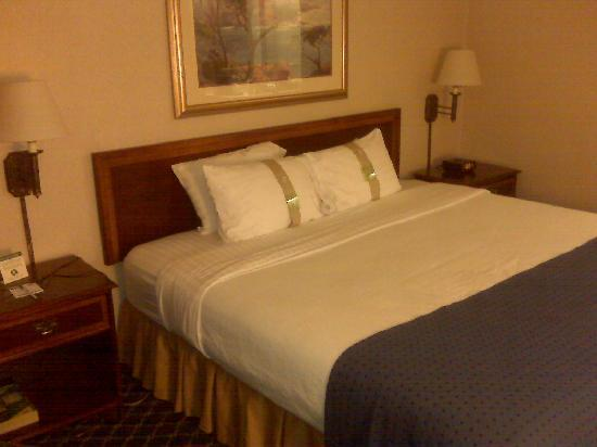 Holiday Inn Chicago Downtown: Very comfortable bed. Slept like a baby.