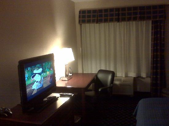 Holiday Inn Chicago Downtown: Good sized TV with decent channel selection.