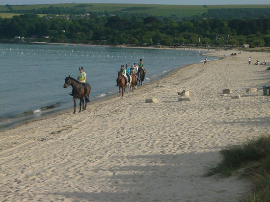 Studland Stables: Heading off along the beach