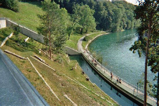 Bern, Sveits: Il parco degli orsi
