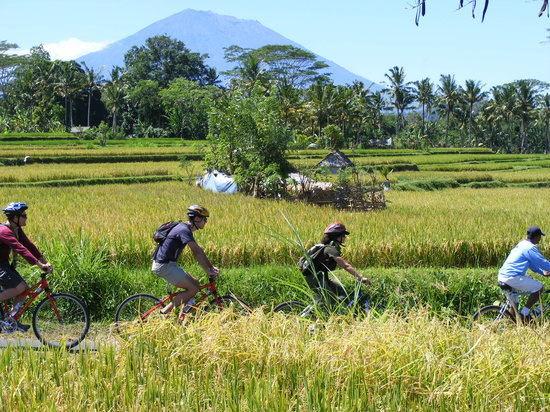 Bali Eco Cycling: Our famous Eco/Educational Cycling tour, one of the numerous adventures we offer in Bali
