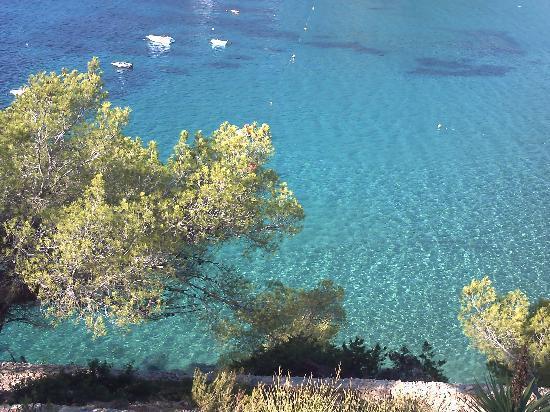 Veraclub Ibiza: mare bellissimo
