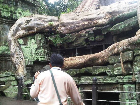 Saron Day Tours: Saron guiding me through the temple