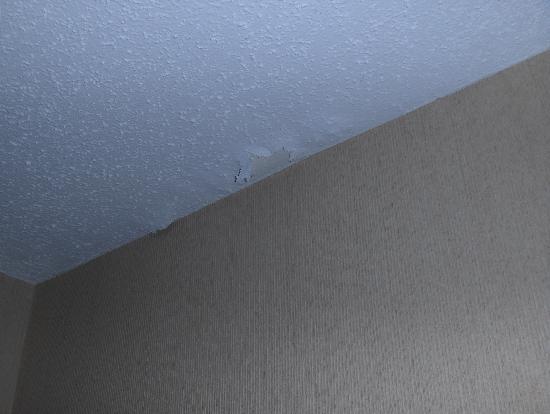 Quality Inn & Suites : ceiling peeling