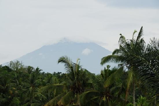 Gunung Paradis Retreat: Jalan Muntig