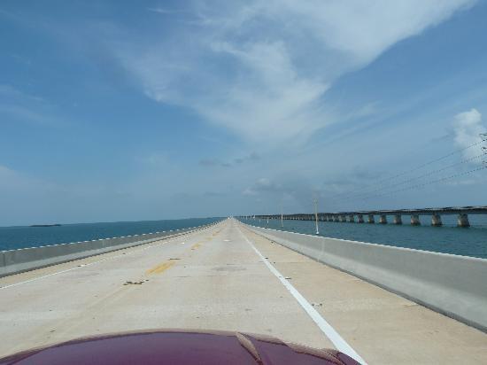Seven Mile Bridge: The Bridge