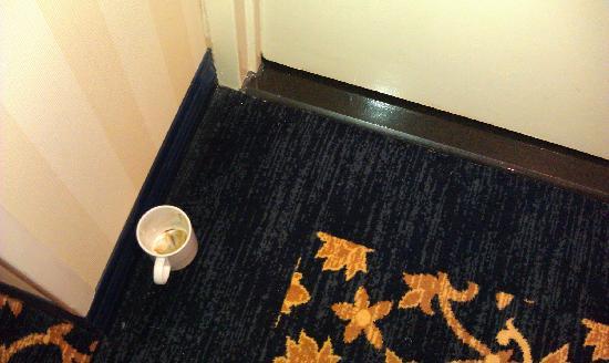 写真シェラトン ノーフォーク ウォーターサイド ホテル 枚