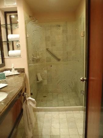 Cozumel Palace: bathroom