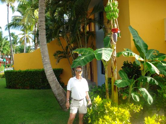 Iberostar Dominicana Hotel: Outside our bungalow