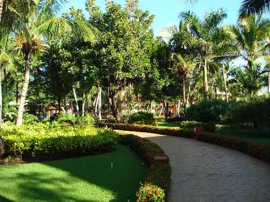 Iberostar Dominicana Hotel: The Gardens