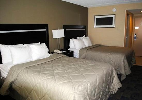 Comfort Inn & Suites / Wolf Road: 2 Double Beds