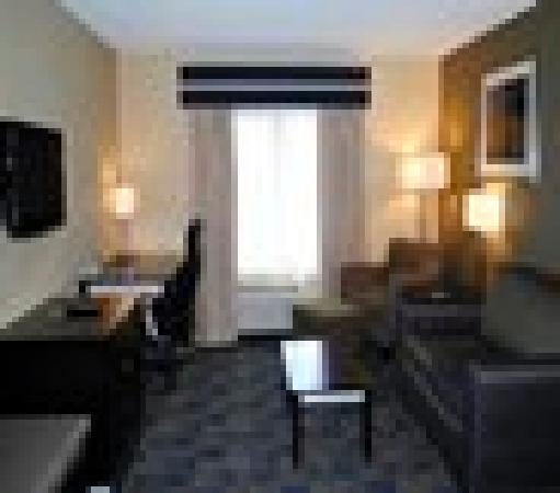 Comfort Inn & Suites / Wolf Road: Suite