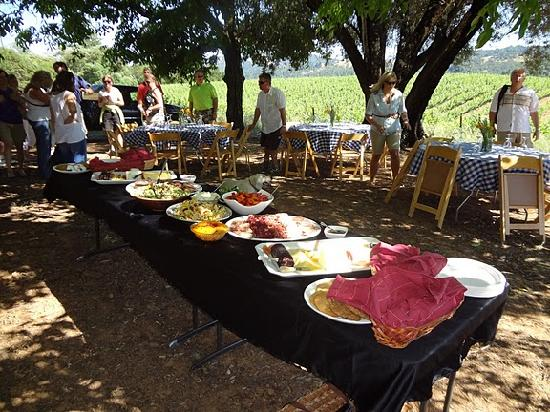 Mauritson Wines: One view of the lunch