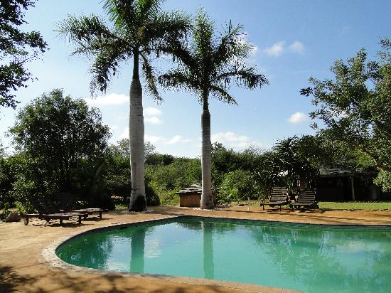Kubu Safari Lodge: Pool zum Relaxen