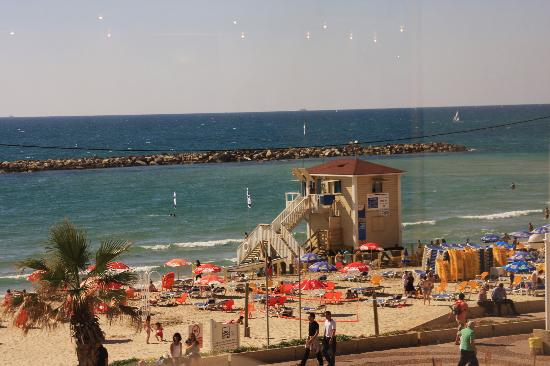 Dan Tel Aviv Hotel : View of beach from my room