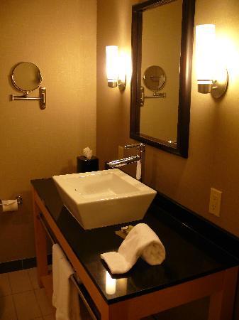 Cambria hotel & suites Columbus - Polaris: Spa-like bathrooms...