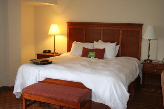 Hampton Inn & Suites Knoxville - Downtown: Most comfortable bed ever