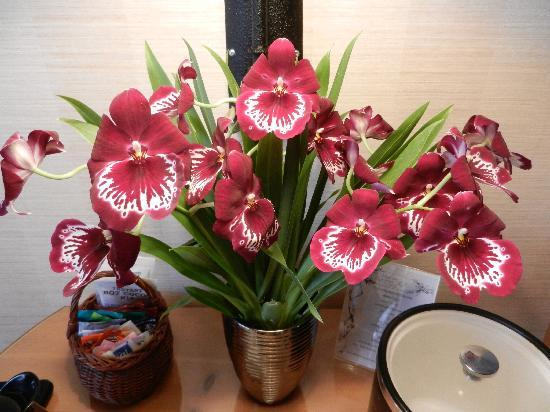 Inn On Summerhill: Beautiful live orchids - nice touch!