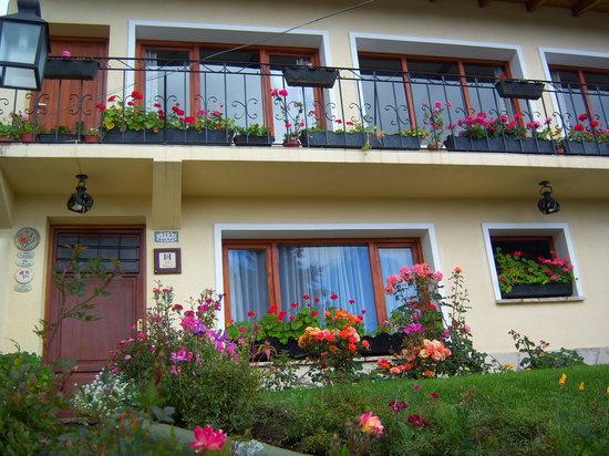 Hosteria Guemes: recibimiento floral