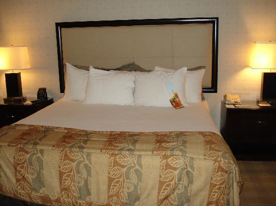 Hilton Alexandria Old Town: Very comfortable bed
