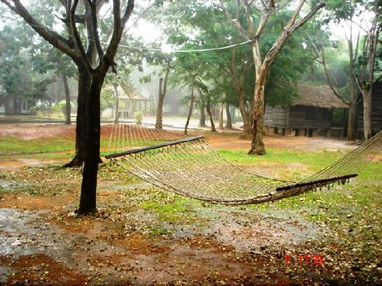 Bannerghatta Nature Camp : The View