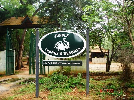 Bannerghatta Nature Camp: The Entrance