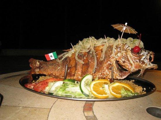 Hollywood Florida Mexican Food