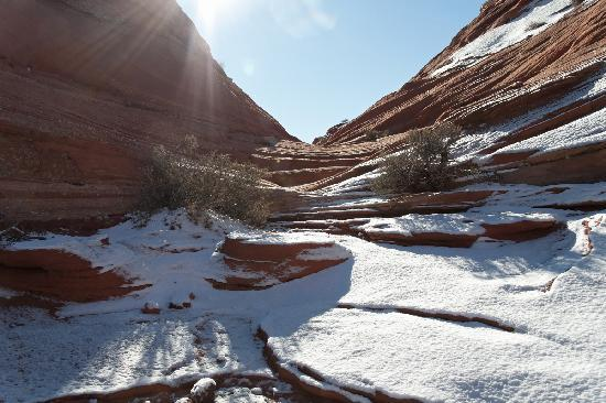 The Wave at Coyote Buttes: Path to the Wave