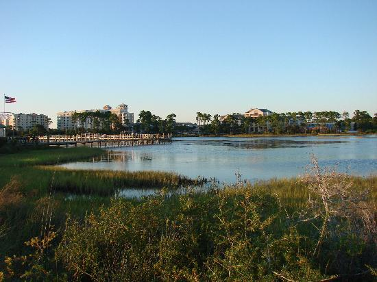 Marriott's Legends Edge at Bay Point: The wetlands had lots of birds and fish jumping