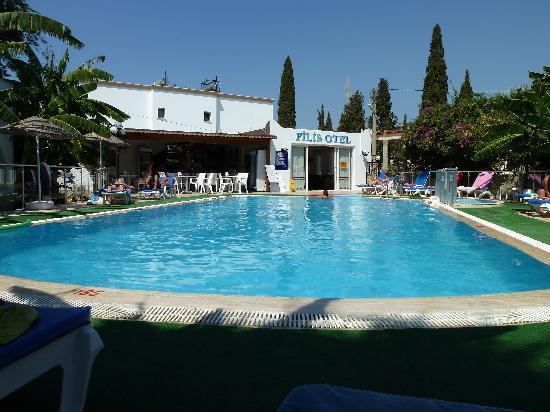 Filis Otel: la piscine ,le bar et l'acceuil