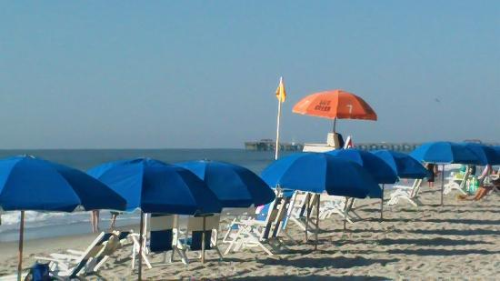 Compass Cove Oceanfront Resort: $30 chairs on beach