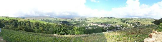 Holmfirth Vineyard: views