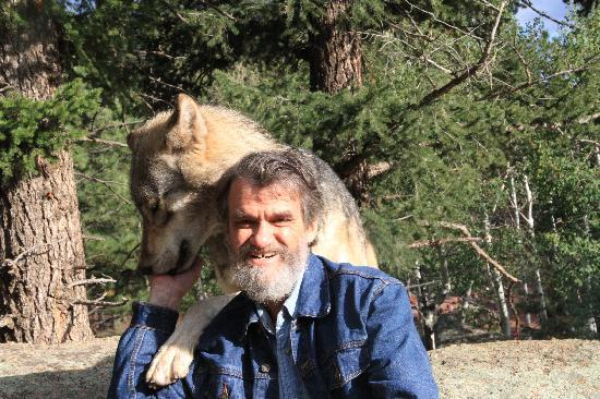 Colorado Wolf and Wildlife Center: friendly