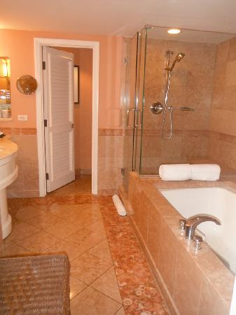 Grand Wailea - A Waldorf Astoria Resort: want a bathroom like this at home