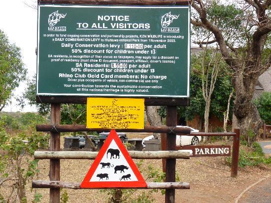 Sungulwane Hills Game Lodge: imfolozi