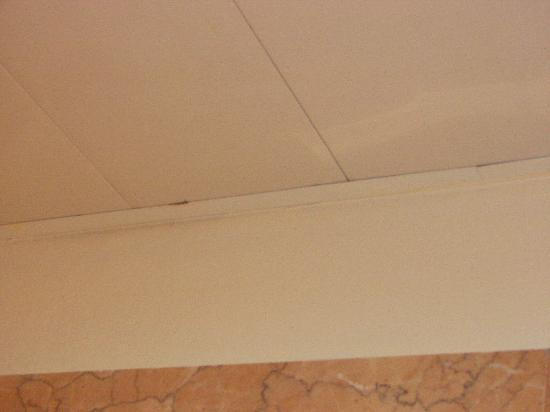 Majestic Colonial Punta Cana: More mold!!!