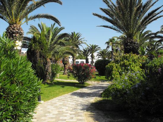 SENTIDO Phenicia: The Beautiful Gardens Leading Down to the Private Beach.