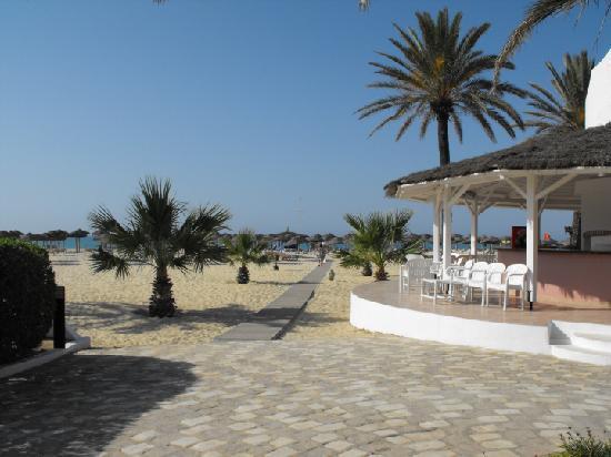SENTIDO Phenicia: The Beach Bar.