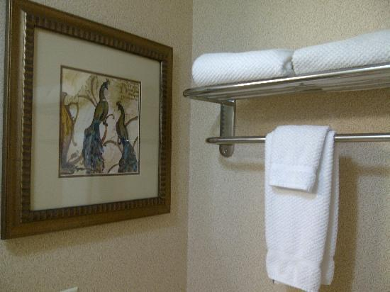 Staybridge Suites London: bathroom art