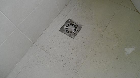 كي كي سويتس هوتل: Scolo del bagno otturato (stanza 306)